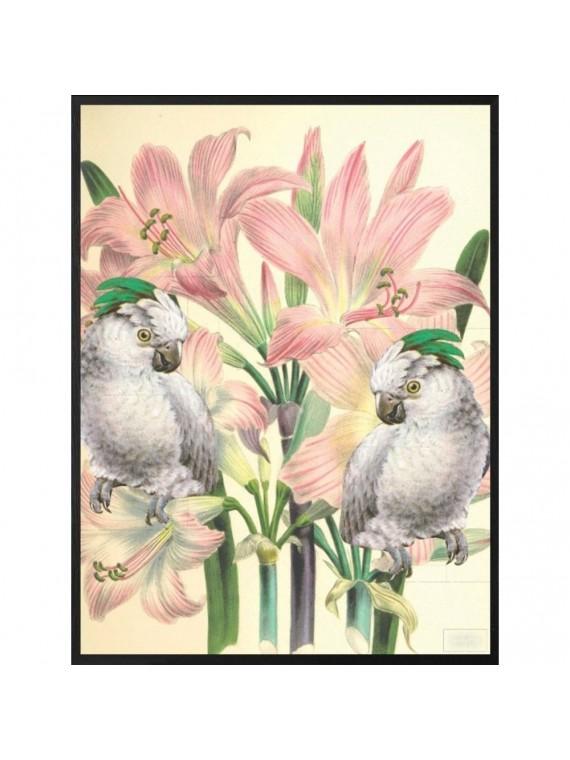 Vanilla fly poster 20 - 25 mirror birds- cornice nera