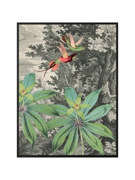 Vanilla fly poster 20 - 25 flying bird- cornice nera