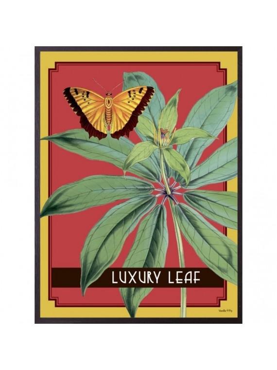 Vanilla fly poster 20 - 25 luxury leaf  - cornice nera