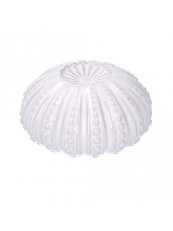 Riccio di mare ceramica bianco tondo cm 18 1h9 3