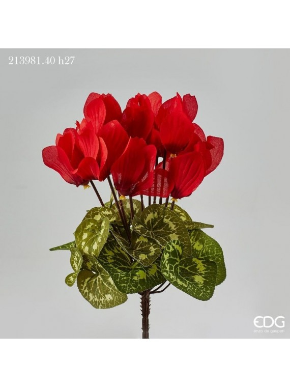 Edg ciclamino prix cesp rosso h27