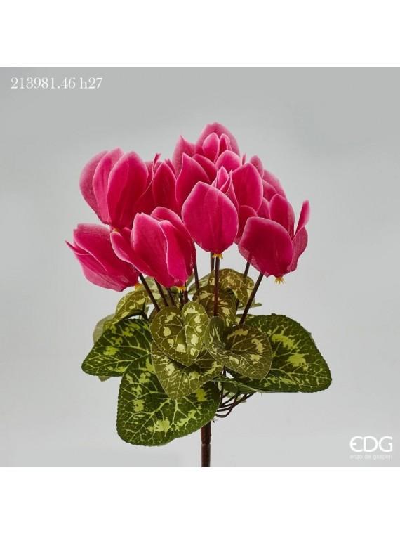 Edg ciclamino prix cesp rosa h27