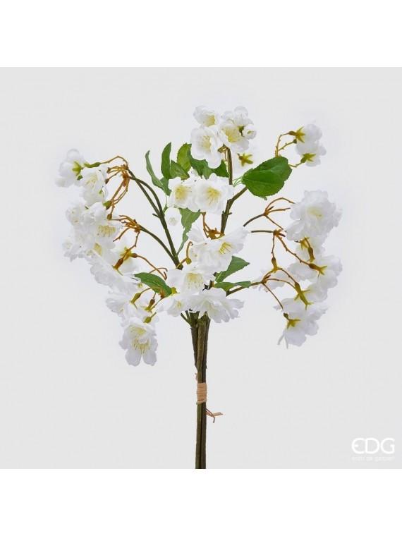 Edg sakura bianco (pesco giapp) h45