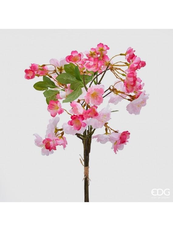 Edg sakura rosa (pesco giapp)h45