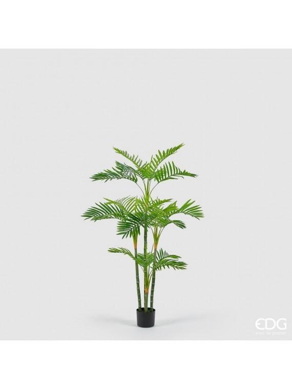 Edg palma areca con vaso pvc h147