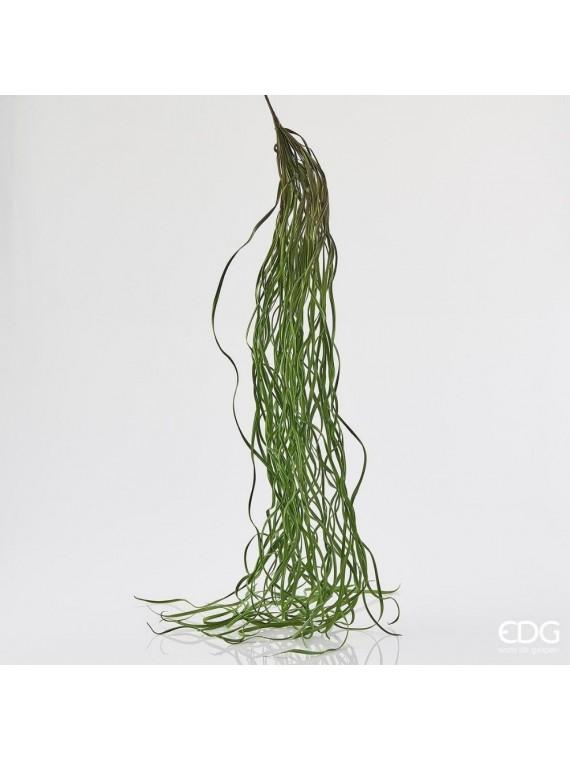 Edg alga bell l100