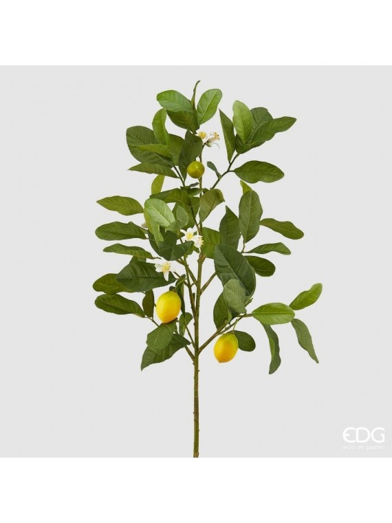 Edg limone bell ramo h86